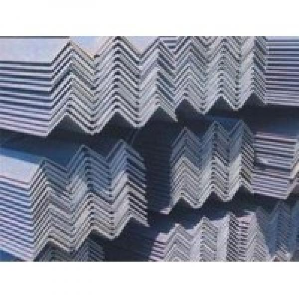 Golden Supplier Steel Angle Iron with Holes